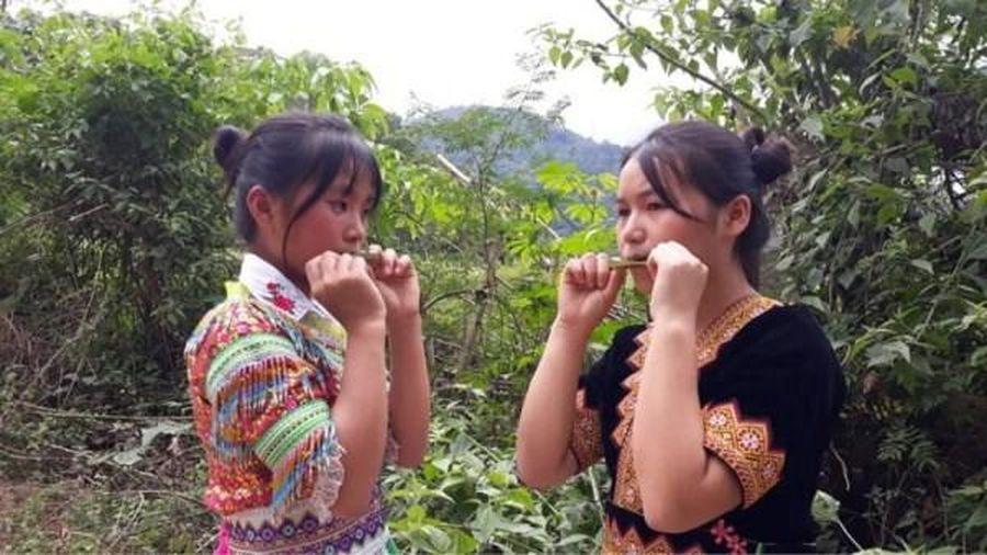 Kèn lá người Mông - họa mi của núi rừng