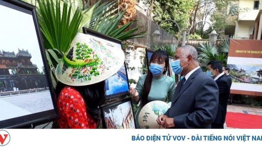 Phát triển quan hệ Việt Nam - Ai Cập qua các hoạt động văn hóa