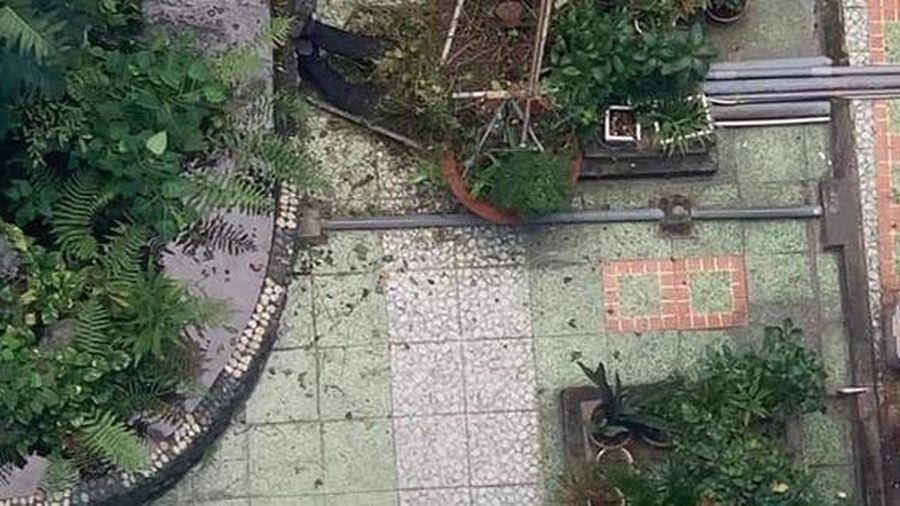 Cựu sinh viên rơi lầu tử vong tại Trường ĐH Ngoại ngữ - Tin học TP HCM