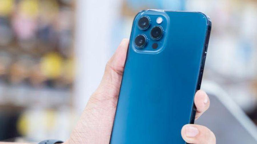 iPhone 12 Pro Max VN/A hai phiên bản màu Pacific Blue và Graphite đã trở lại