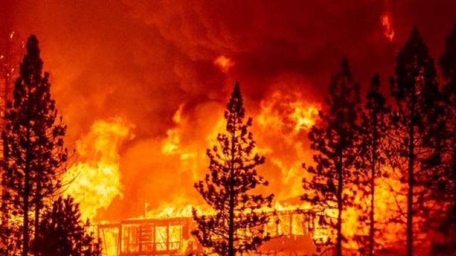 Nguy cơ cháy rừng từ những đám cháy lớn