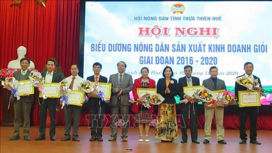 Thừa Thiên - Huế tuyên dương 150 điển hình nông dân sản xuất kinh doanh giỏi