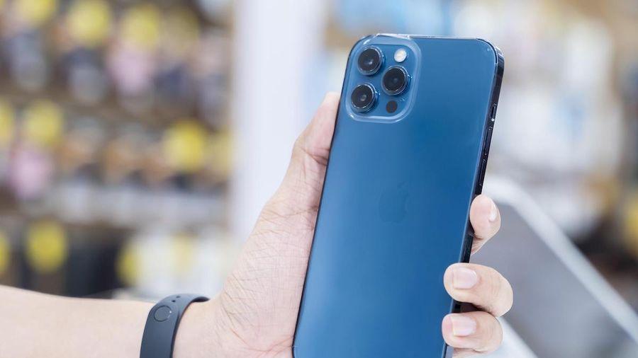iPhone 12 Pro Max màu Pacific Blue và Graphite về ồ ạt
