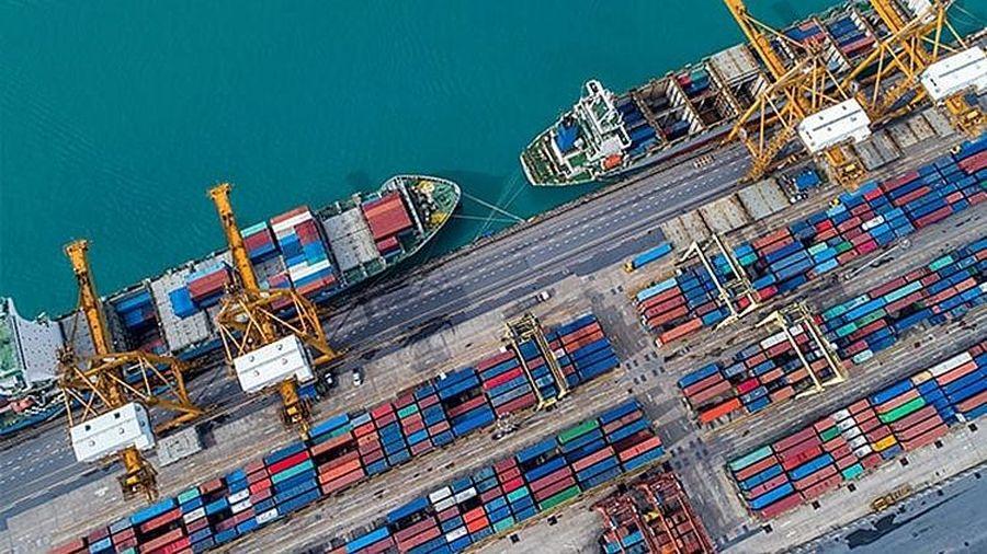 Việt Nam và Vương quốc Anh đang tích cực trao đổi hướng tới FTA song phương