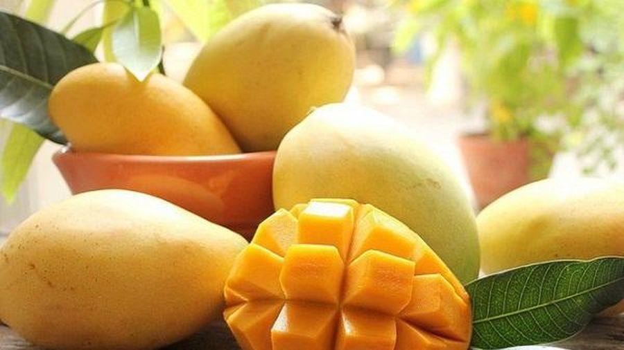 4 loại trái cây là 'khắc tinh' của ung thư vú, ăn càng nhiều càng tránh được căn bệnh nguy hiểm này