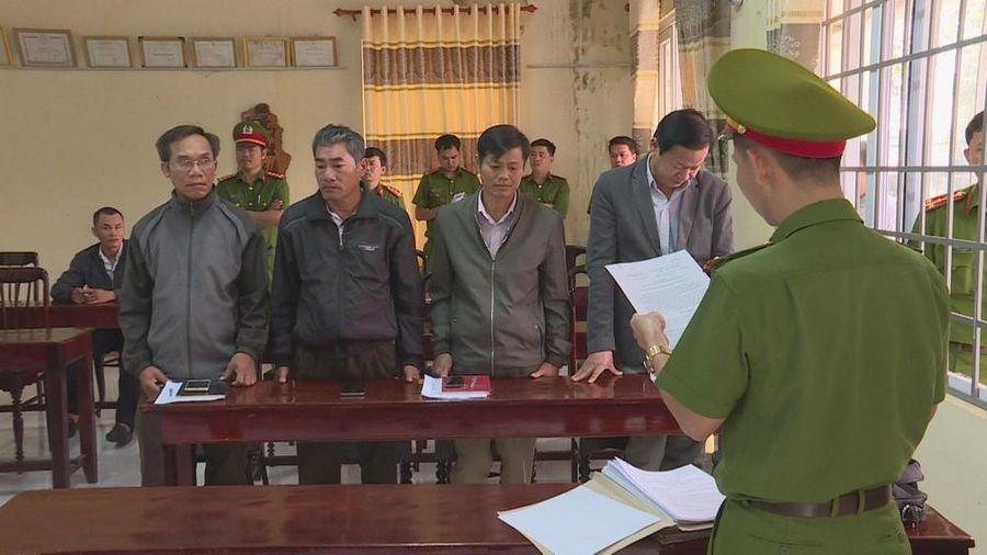Tin mới vụ dàn lãnh đạo công ty lâm nghiệp 'xộ khám' vì mất rừng