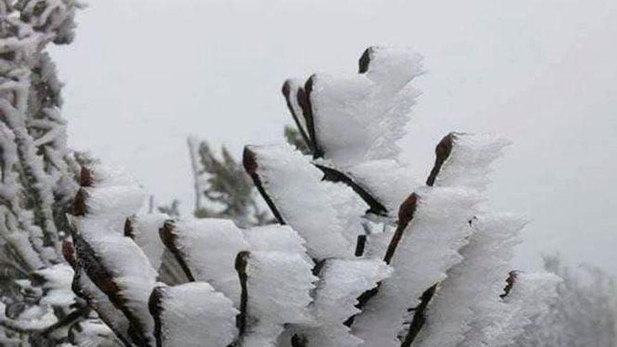 Hai ngày cuối tuần cực lạnh, vùng núi có băng giá