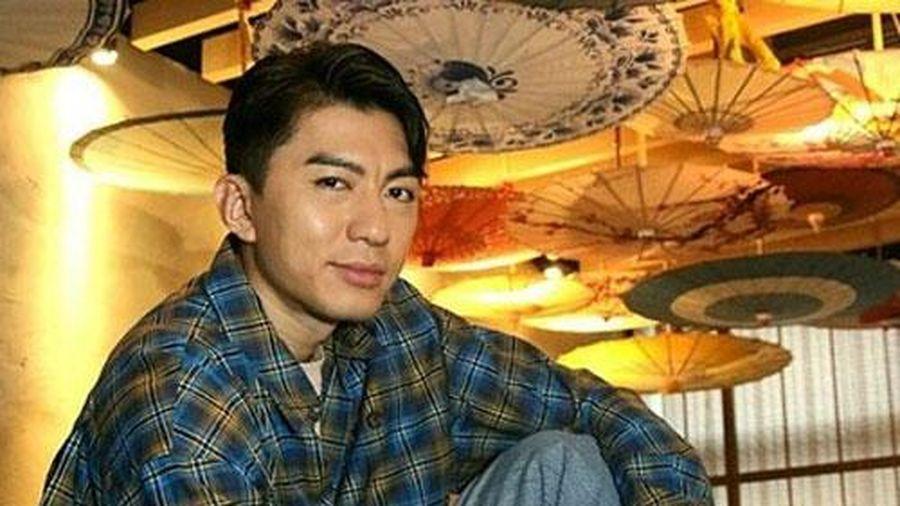 Viên Vỹ Hào không sợ mang tiếng 'chuột sa chĩnh gạo'