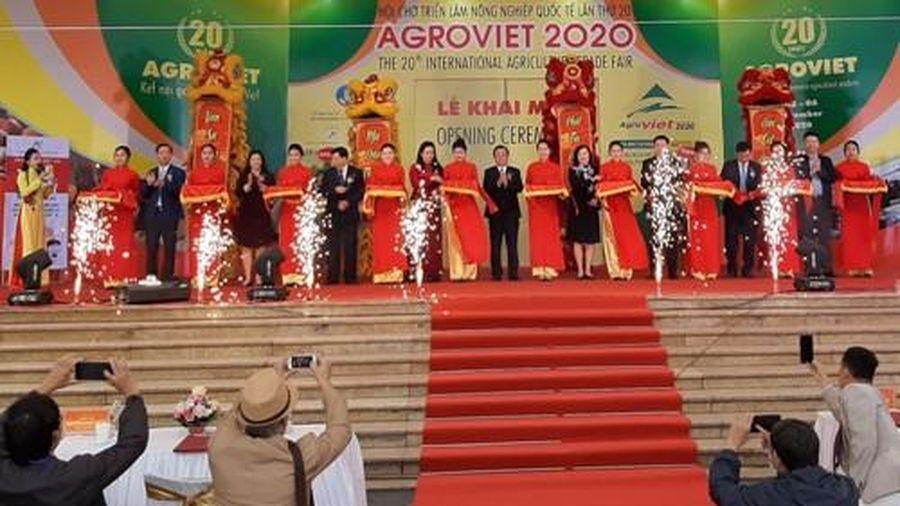220 gian hàng tham gia Hội chợ 'Triển lãm Nông nghiệp Quốc tế lần thứ 20'