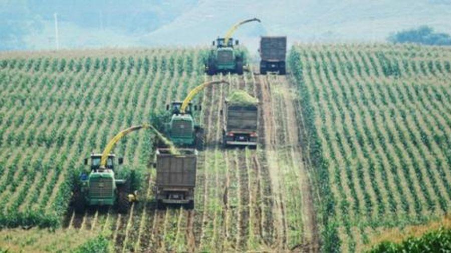 Giải bài toán nông nghiệp & nông dân