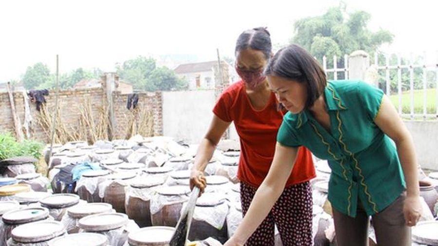 Thái Nguyên: Tạo động lực thúc đẩy giá trị sản phẩm nông nghiệp