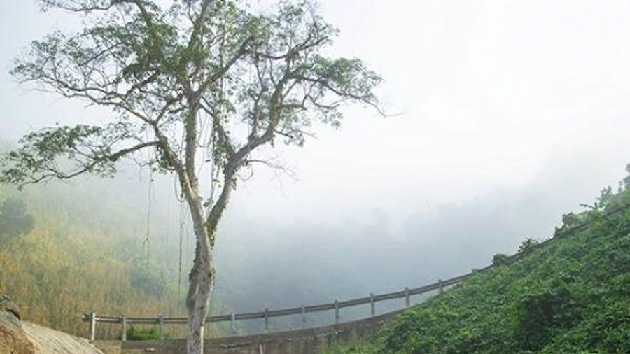 Ngược ngàn Khánh Sơn