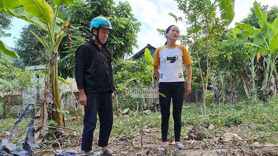 Khẩn trương xác minh vụ giá cây ăn quả chênh lệch bất thường ở Điện Biên