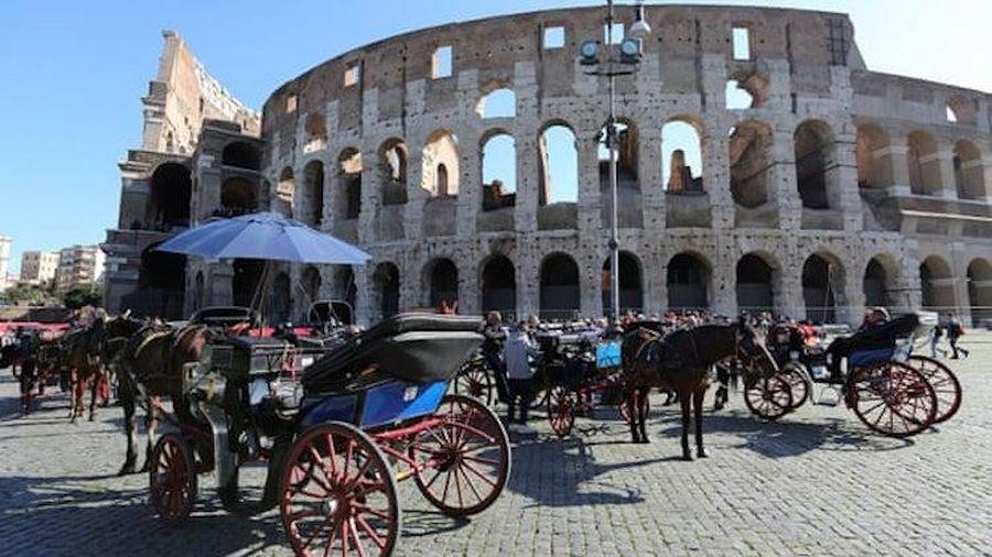 Thủ đô Italy cấm xe ngựa kéo chở khách du lịch trên đường phố