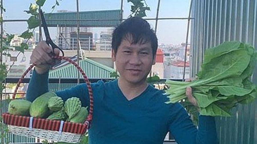 Trọng Tấn thu hoạch rau sạch nhà trồng