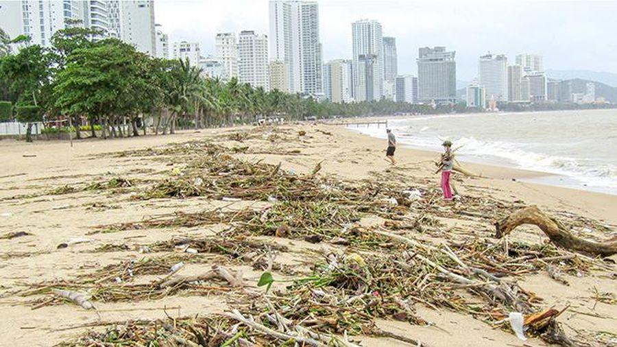 Cần chung tay thu gom rác trên bãi biển
