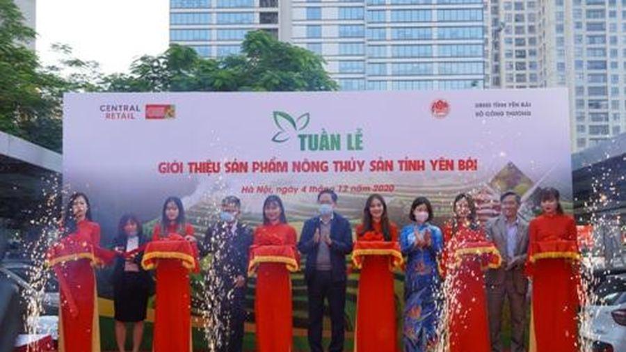 Nhiều đặc sản tỉnh Yên Bái được giới thiệu với người tiêu dùng Hà Nội