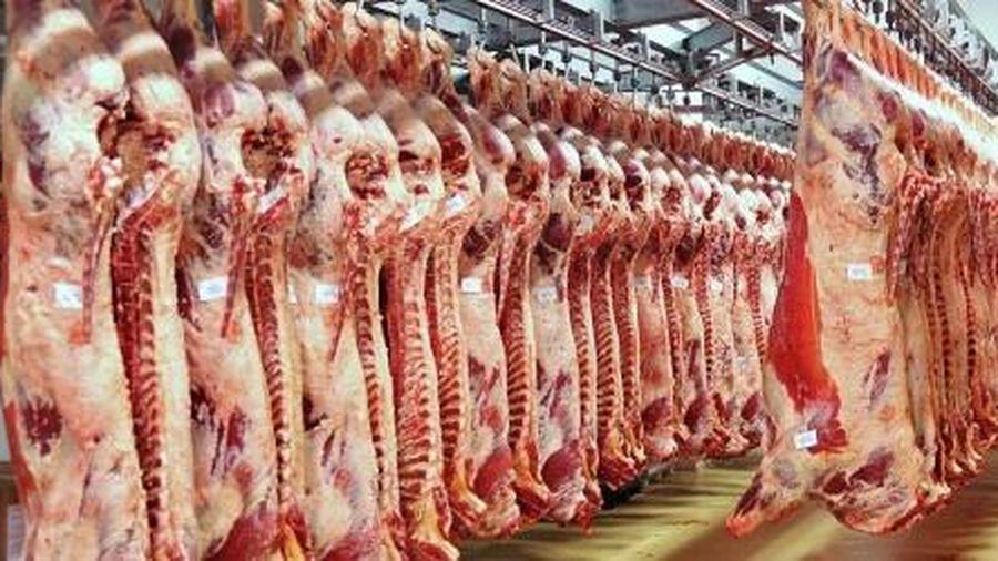Việt Nam chi 300 triệu USD nhập khẩu thịt lợn ướp lạnh