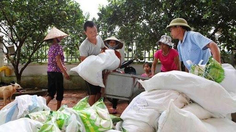 Xuất cấp hơn 3.500 tấn gạo hỗ trợ người dân vùng lũ Quảng Bình, Quảng Ngãi