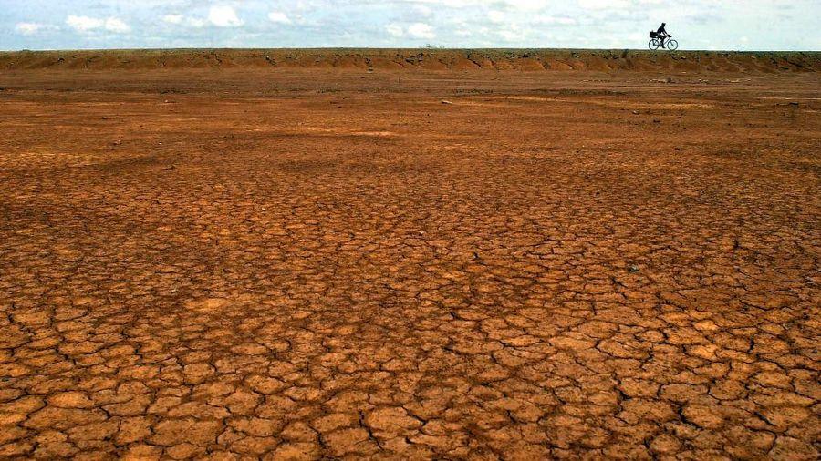 FAO: Lớp đất bề mặt trên toàn cầu đang bị suy thoái