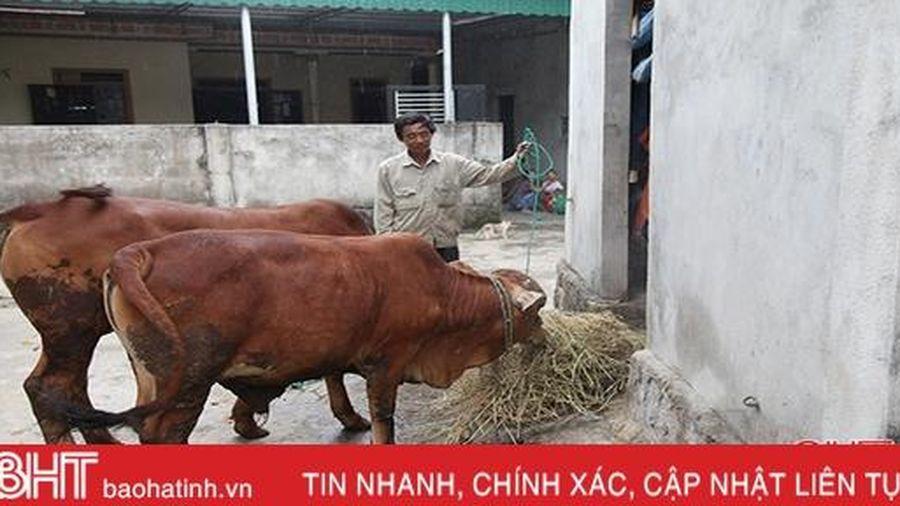 Địa phương nào có tỷ lệ hộ nghèo cao nhất Hà Tĩnh?