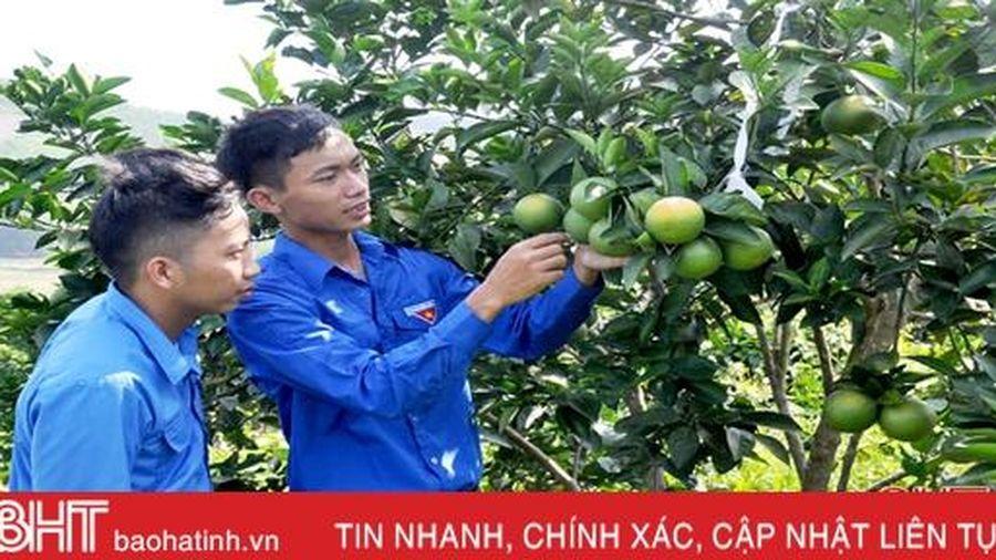 Hà Tĩnh có 6 đại biểu tham dự Đại hội Tài năng trẻ Việt Nam lần thứ III