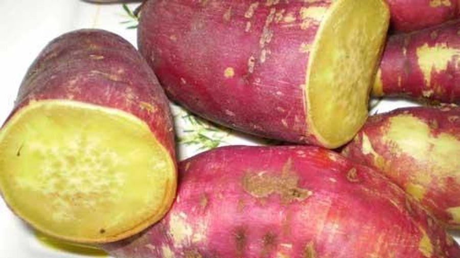 Những điều cấm kỵ khi ăn khoai lang