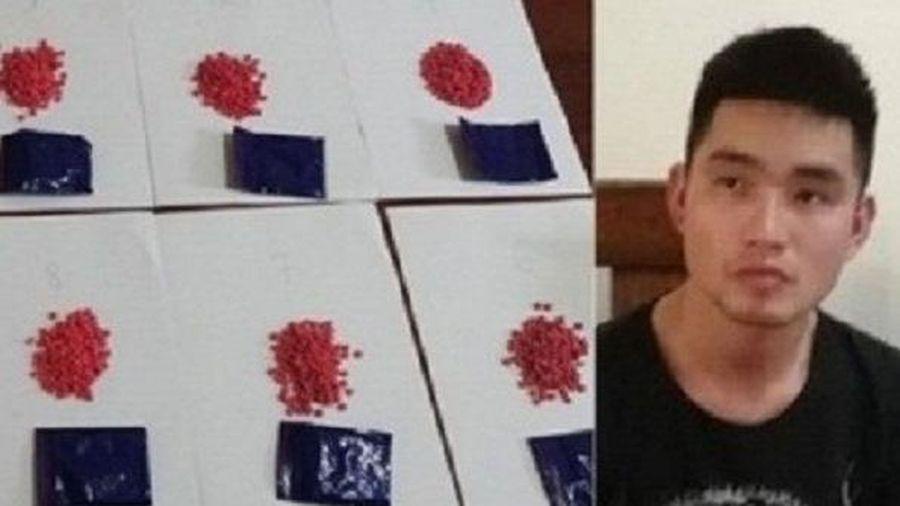 Nghệ An: Bắt đối tượng buôn ma túy từ Quế Phong về Diễn Châu