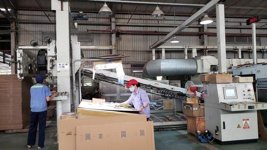 Thúc đẩy doanh nghiệp tăng cường sản xuất theo hướng kinh tế tuần hoàn