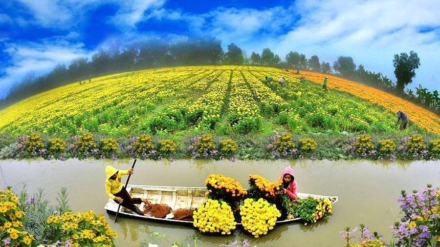 Ngành nông nghiệp tập trung nhiệm vụ kép, vừa khôi phục sản xuất vừa chống dịch hiệu quả