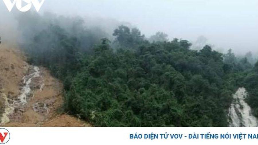 Hai người đi rừng chết trong tư thế còn nằm trên võng ở Quảng Bình