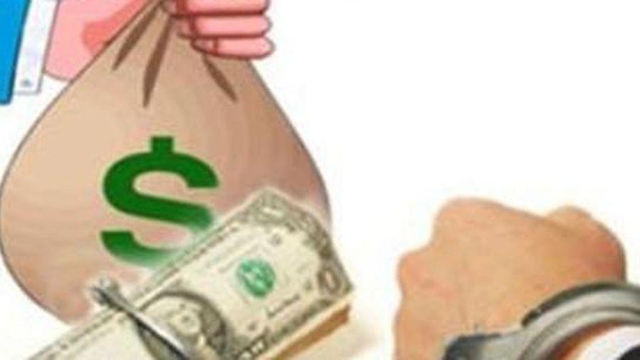 Nữ đại gia khai đưa 150.000 USD cho 1 cục trưởng để 'chạy chức'