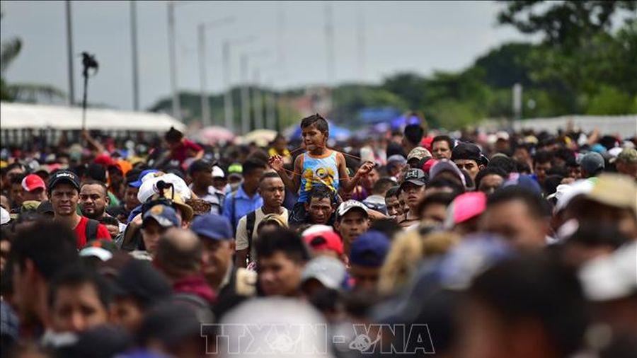 Hàng trăm người di cư từ Honduras tìm đường tới Mỹ