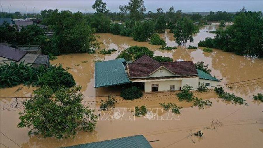 Chính phủ Ấn Độ tặng hàng cứu trợ lũ lụt cho nhân dân miền Trung Việt Nam
