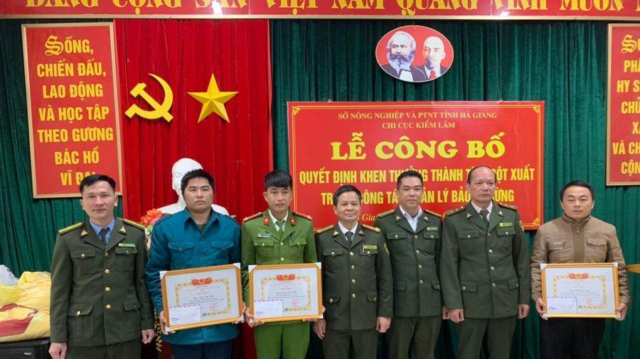 Hà Giang: Bảo vệ rừng nghiến Phong Quang