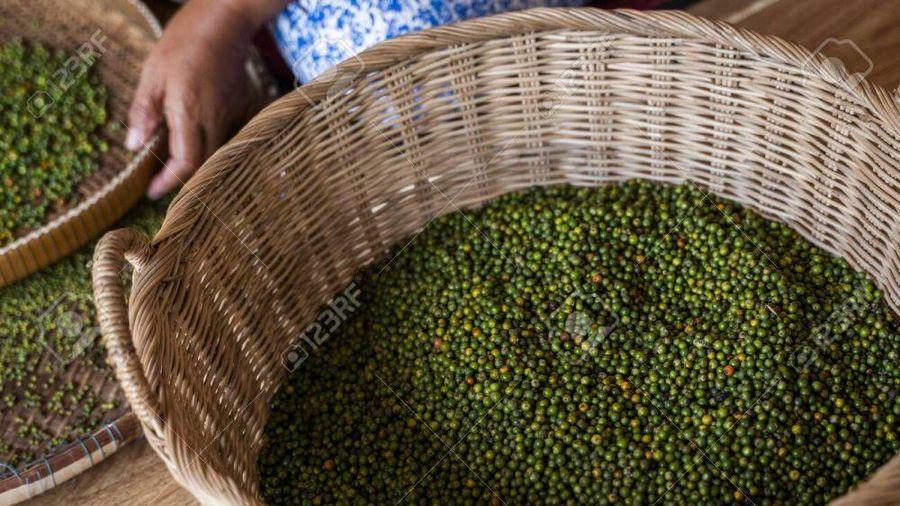 Giá cà phê hôm nay 16/1: Tín hiệu lạc quan cho thị trường cà phê, Giá hồ tiêu xuất khẩu nhiều khả năng giảm
