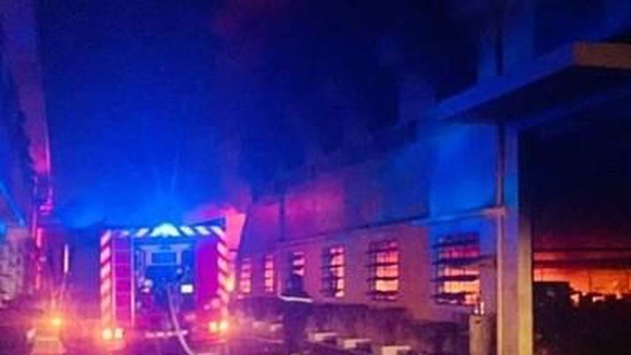Hơn 1.000 công nhân tháo chạy do xưởng giầy bùng cháy