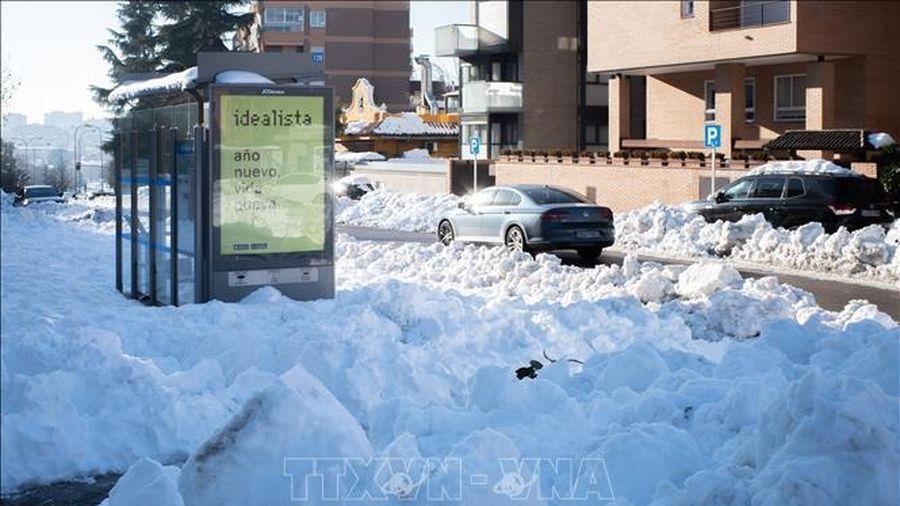 Vùng thủ đô Tây Ban Nha lùi thời gian mở cửa lại trường học sau trận bão tuyết lịch sử