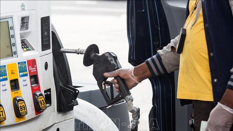 Giá dầu giảm mạnh do lo ngại về tình hình lây lan COVID-19 tại Trung Quốc