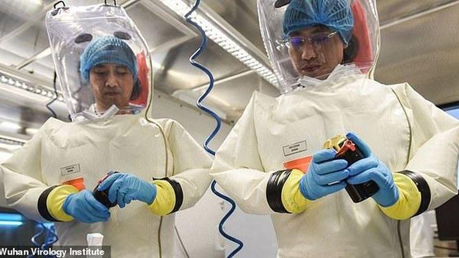 Mỹ tăng cường cáo buộc COVID-19 có thể 'thoát' từ phòng thí nghiệm Trung Quốc