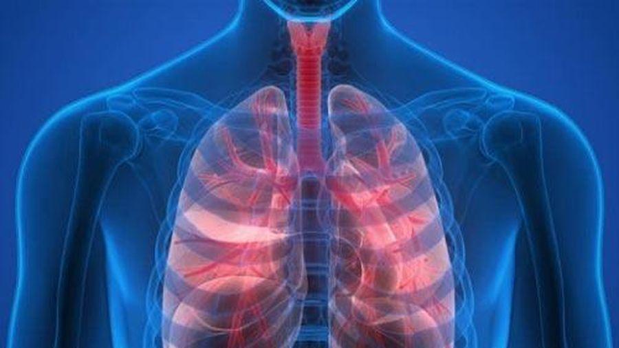 4 cách để nuôi dưỡng phổi khỏe mạnh
