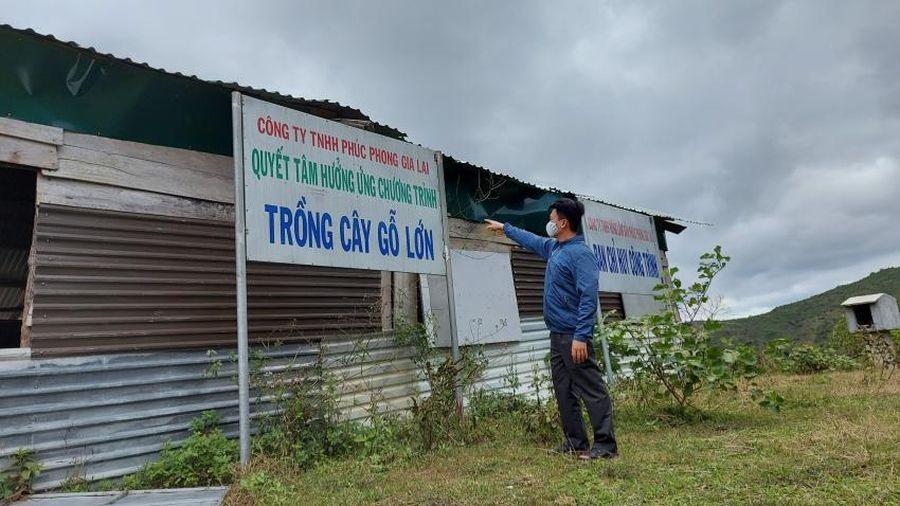 Vụ bắt tạm giam Chủ tịch HĐTV Công ty Phúc Phong Gia Lai: Nhiều tình tiết còn mâu thuẫn!