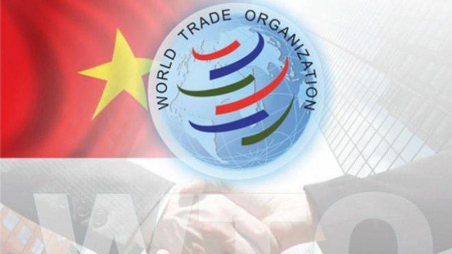 Đàm phán gia nhập WTO: Hành trình gian nan