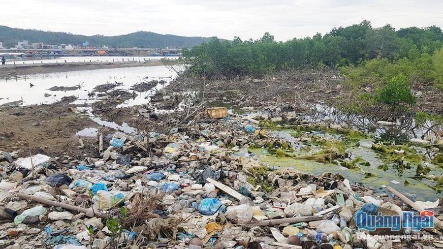 Vùng đất ngập nước ven biển: Cần bảo tồn, sử dụng bền vững