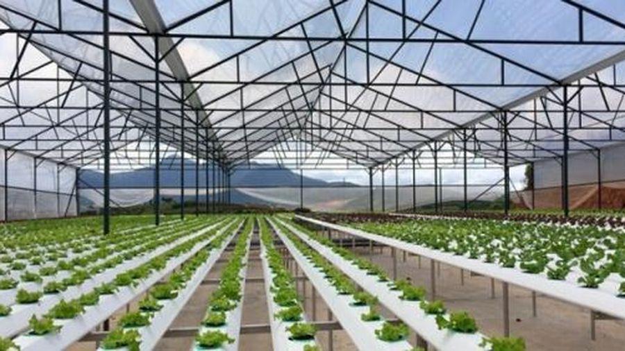 Thái Nguyên thành lập khu nông nghiệp ứng dụng công nghệ cao 154ha
