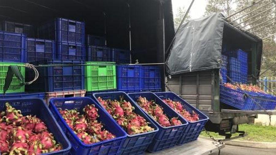 Cơ hội nào cho nông sản Việt Nam trên thị trường 2,2 tỷ người?
