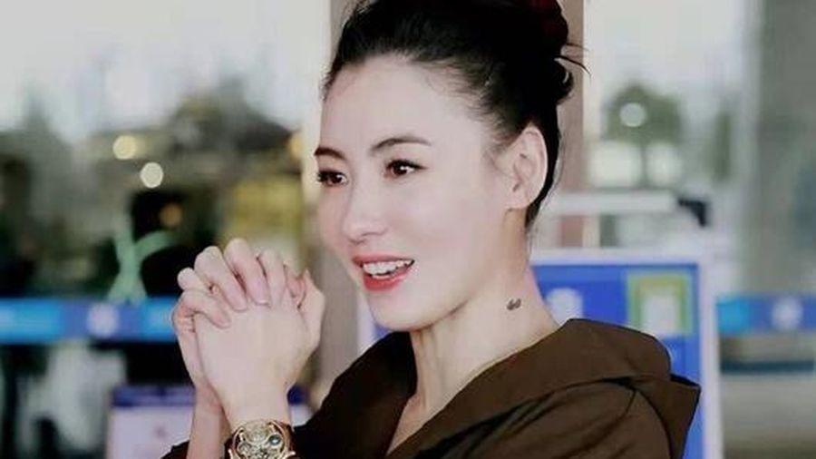 Trương Bá Chi khoe nhan sắc cực phẩm, đẹp không góc chết khiến Tạ Đình Phong bỗng dưng bị 'réo tên'