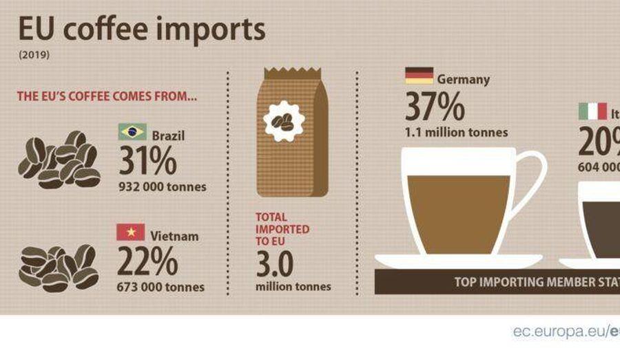 Giá cà phê hôm nay 18/1: Lợi thế của cà phê Việt từ thị trường EU; Xu hướng tăng của giá hồ tiêu năm 2021