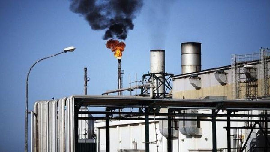 Libya: Sản lượng dầu của Waha Oil sẽ bị cắt giảm 200,000 thùng/ngày do bảo trì đường ống
