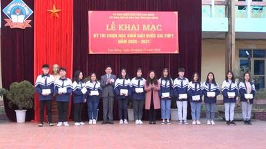 Hơn 600 thí sinh đạt giải Nhất, Nhì kỳ thi học sinh giỏi quốc gia THPT